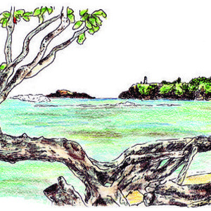 300x300 Kauapea Beach Drawing