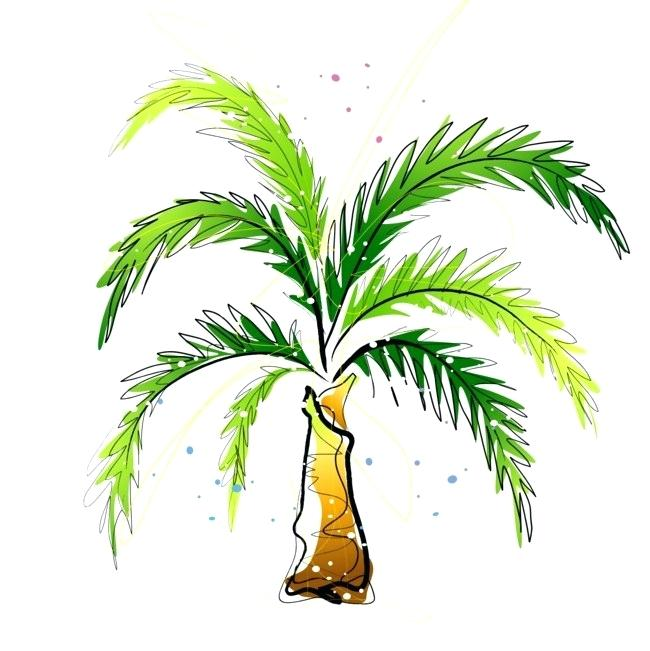 650x651 drawing a palm tree palm tree drawing poster palm tree line