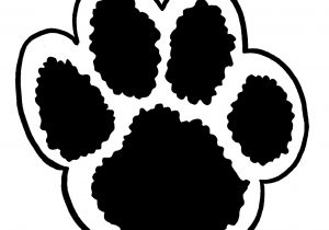 300x210 Bear Paw Print Drawing Bear Claw Drawing At Getdrawings Free