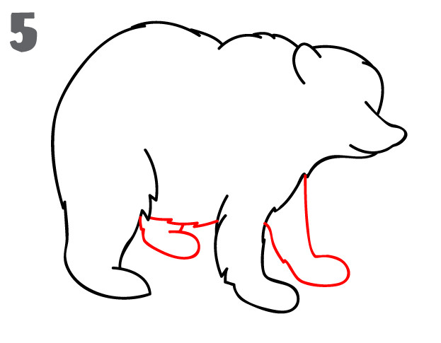 623x485 Computer You Can Draw On Bear Paw Drawing Clipart Best Layout