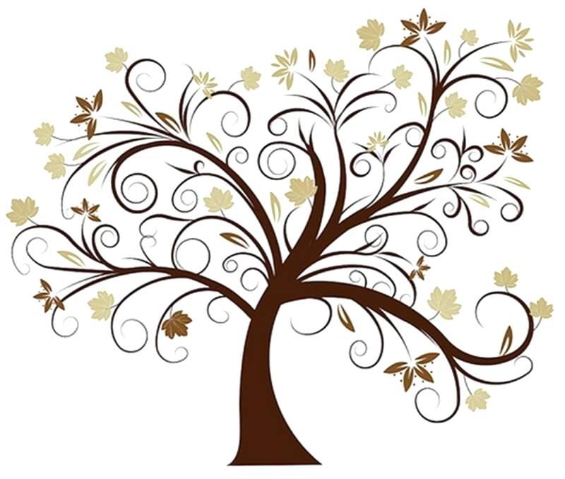 800x678 beautiful drawings of trees beautiful tree beautiful drawings