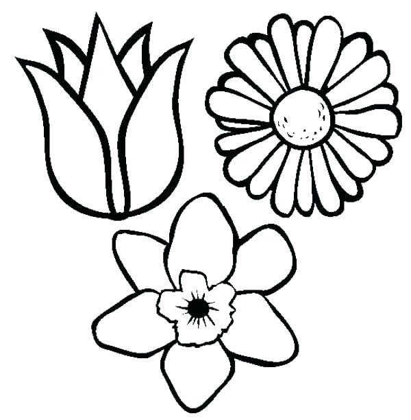 600x612 drawings of pretty flowers draw pretty flowers pencil drawings