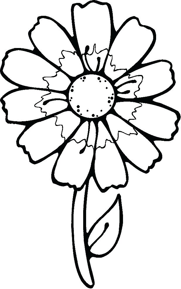 618x987 drawings of pretty flowers easy to draw flowers pretty flowers
