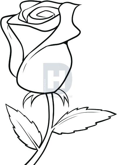 400x561 draw rose flower drawing rose how to draw a beautiful rose flower