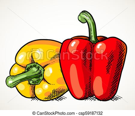 450x388 two sweet peppers vegetable illustration pair of fresh sweet