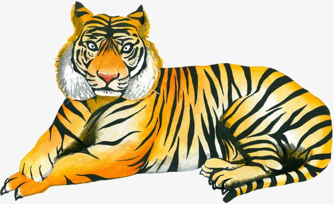 650x398 yellow tiger, tiger clipart, hand painted tiger, drawing tiger png