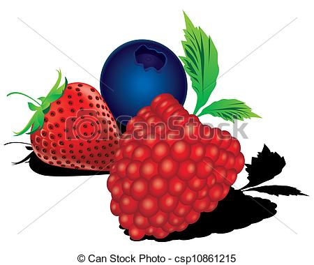 450x380 mixed berries vector the abstract of mixed berries