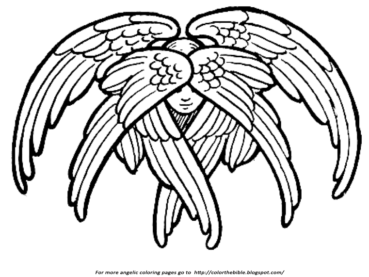761x571 Bible Drawing Wing For Free Download