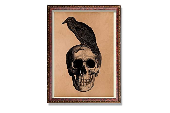 700x466 Raven Print Vintage Bird Decor Skull Illustration