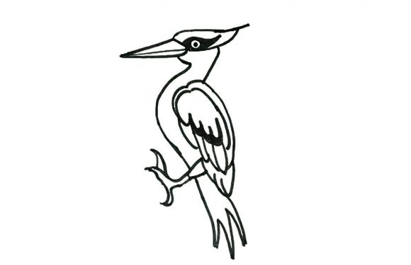 580x375 Easy Bird Drawing For Kids Step