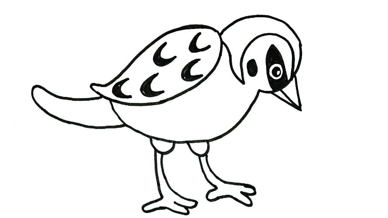 1280x720 How To Draw A Sparrow How To Draw Birds Drawing Easy Step