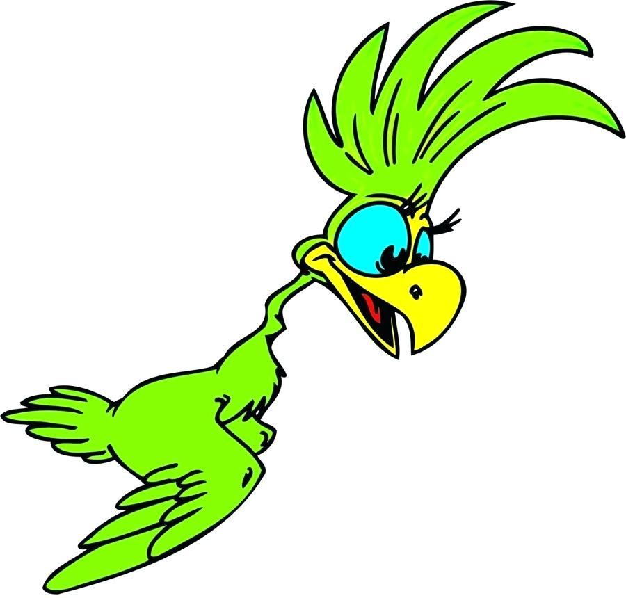 900x860 Parrots Drawing Draw Cartoon Parrots Parrot Bird Clip Art Parrot