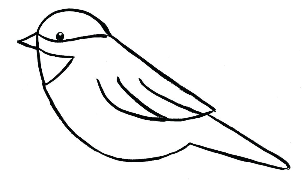 1024x600 How To Draw Easy Birds Running