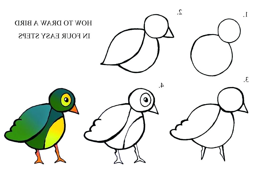 1024x684 Bird Drawing Easy