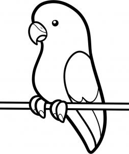 253x302 How To Draw How To Draw A Parakeet For Kids