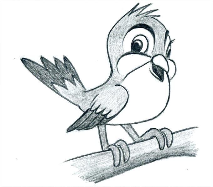 680x596 Pencil Drawing Kids Cartoon Bird Architecture Salary Nyc