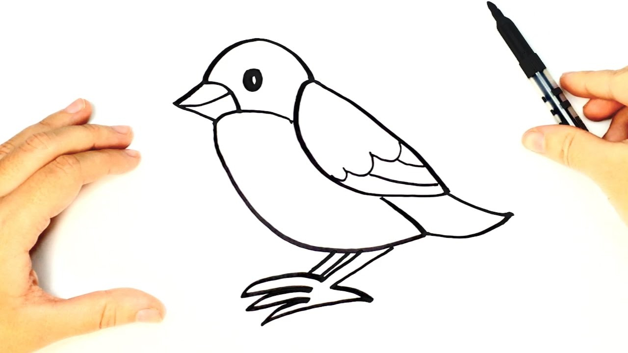 1280x720 Bird Drawing For Kid And How To Draw A Bird For Kids Bird