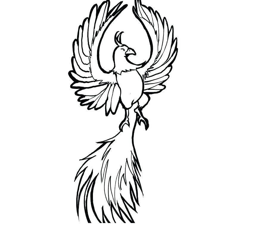 900x760 Easy To Draw Phoenix Phoenix Bird Drawings In Pencil Easy Draw