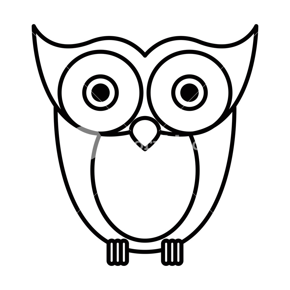 1000x1000 Sketch Silhouette Image Owl Bird Vector Illustration Royalty Free