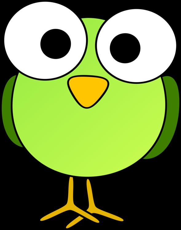 589x750 Bird Cartoon Tweety Drawing Cc0