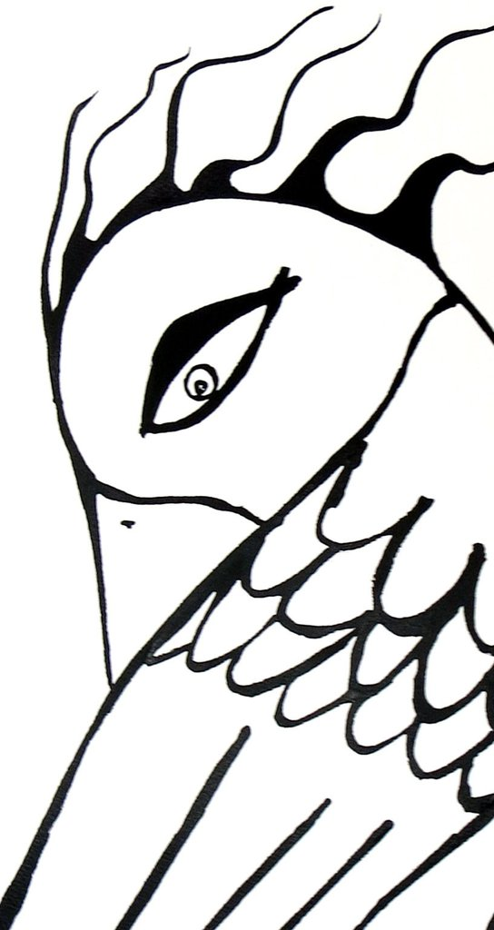544x1024 Bird Woman Ink Drawing Racheljohns