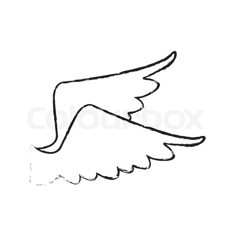 800x800 Drawing Wings Feather Bird Angel Icon Stock Vector Colourbox