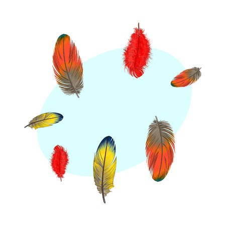 450x450 Hand Drawn Set Of Various Colorful Bird Feathers, Sketch Style