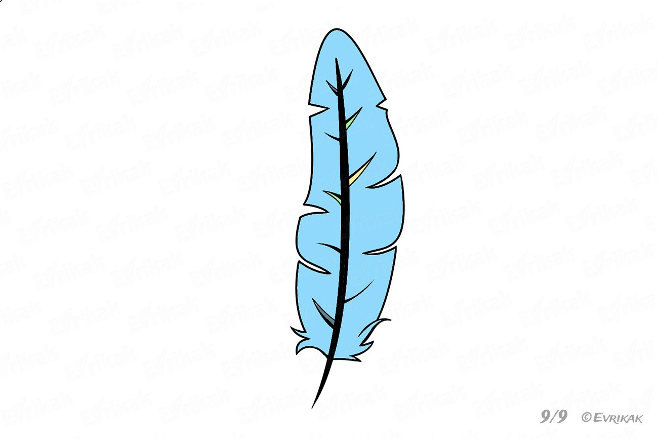 1300x867 How To Draw A Bird's Feather In Stages Using A Pencil