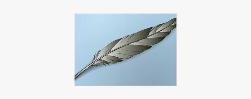 820x323 Vector Drawing Colorful Bird Feather Poster