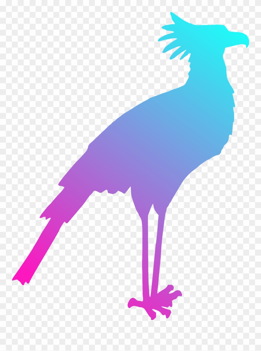 880x1181 Bird Gulls Silhouette Drawing Art