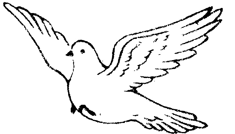 824x472 Bird Drawing Clipart