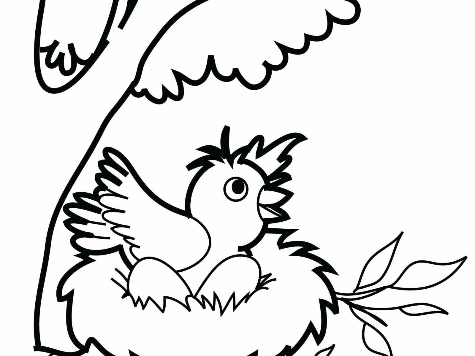 1600x1200 Free Coloring Pages Bird Nest Save Nest Coloring