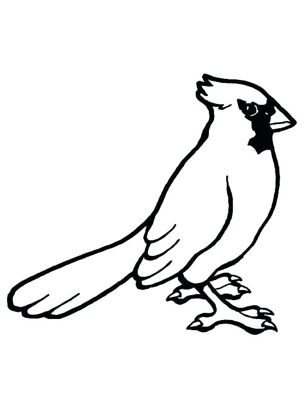 600x800 Printable Bird Nest Coloring Pages