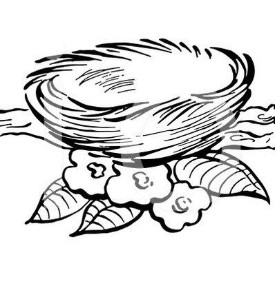 398x418 Bird Nest Coloring Picture Art Coloring Pages Designs Bird
