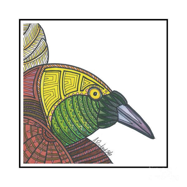 600x600 Bird Of Paradise Drawings
