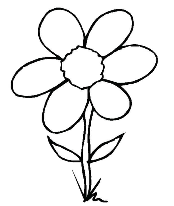 699x828 flower drawing clip art flower picture simple flower line drawing