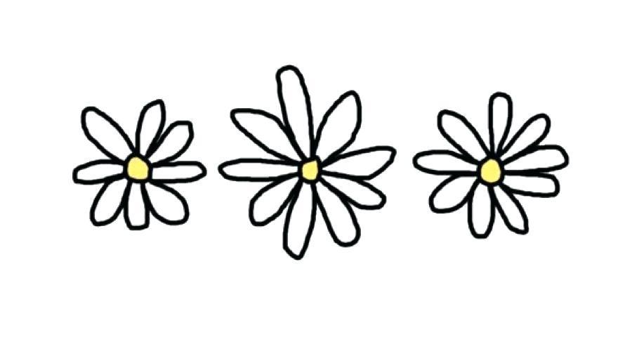 900x480 daisy drawing daisy ii daisy drawing simple