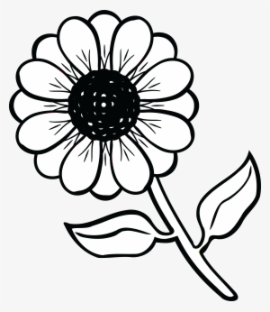 300x346 Daisy Flower Clipart Black And White