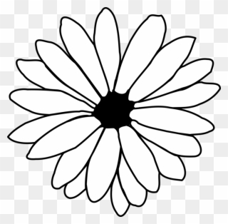 320x314 Free Png Daisy Black And White Clip Art Download