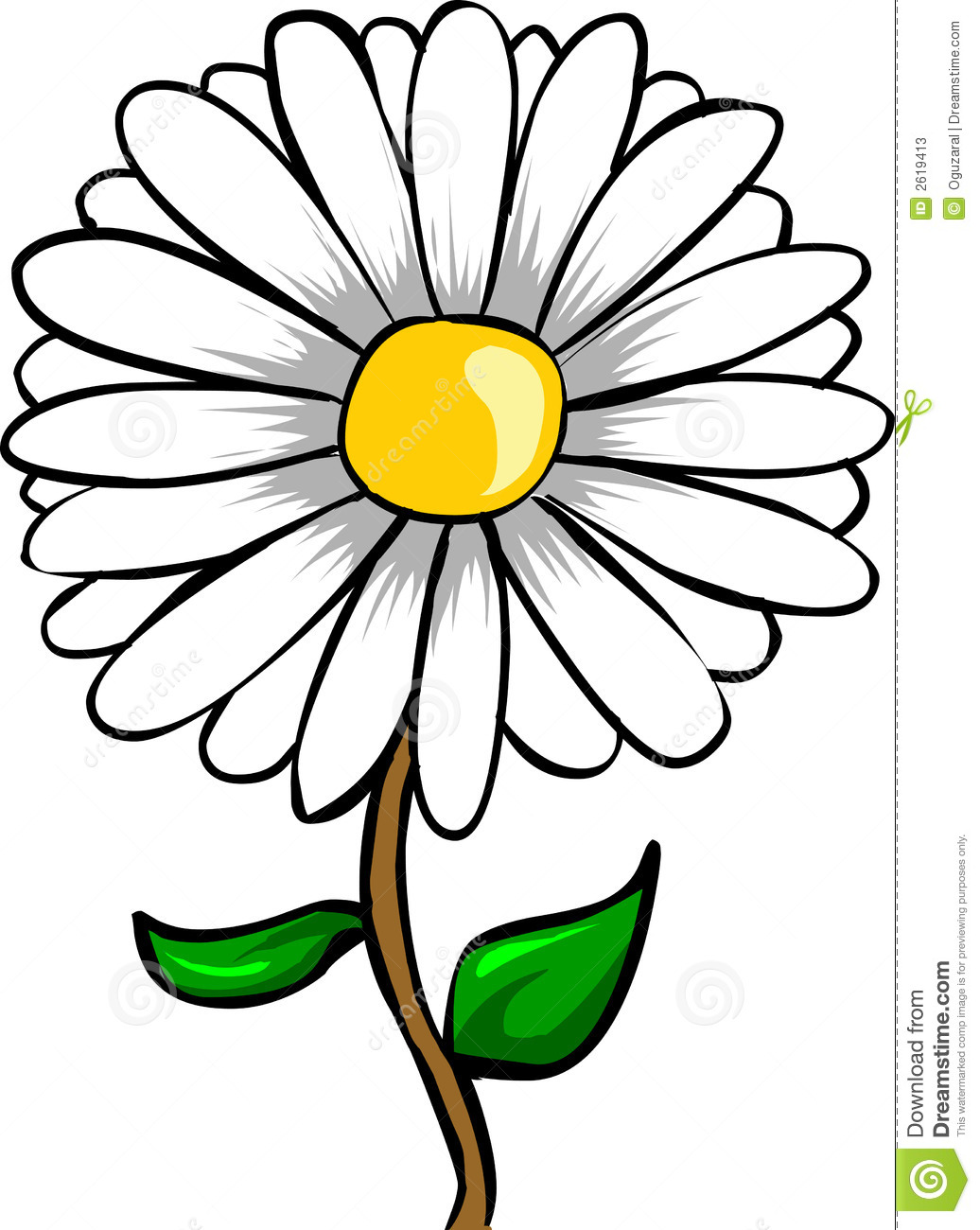1036x1300 White Daisy Flower Clipart