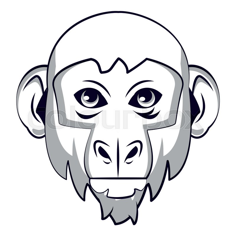 800x800 Monkey Face Cool Sketch In Black And Stock Vector Colourbox