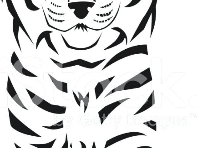 640x480 bengal tiger clipart tiger drawing bengal tiger images clipart