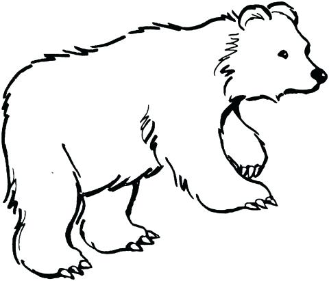 480x411 bear outlines vintage teddy bear toy in outlines bear outlines