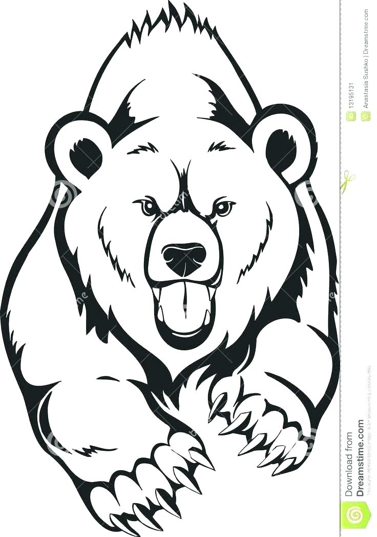 736x1047 grizzly bear coloring pages grizzly bear coloring pictures grizzly