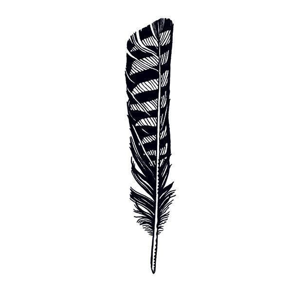 600x600 Hawk Drawing Feather For Free Download