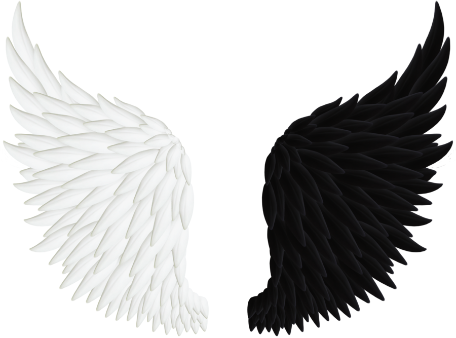900x667 Collection Of Free Feather Drawing Falling Angel Download On Ui Ex