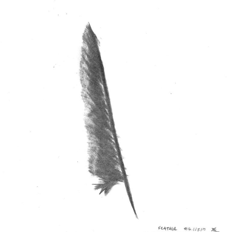 770x770 Feather
