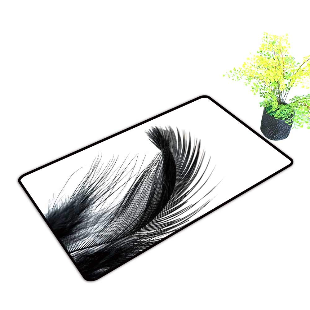 1000x1000 Gmnalahome Extra Thick Door Mat Black Feather Isolate