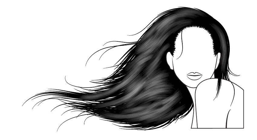 850x463 How To Vector Hair With Brushes In Adobe Illustrator