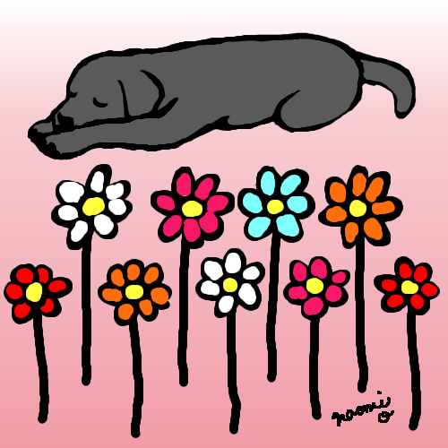 500x500 black labrador sleeping in the flowers digital drawing labrador